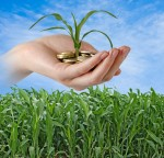 Kredyt dla rolnika